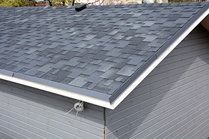 Shingle & Flat Roofs